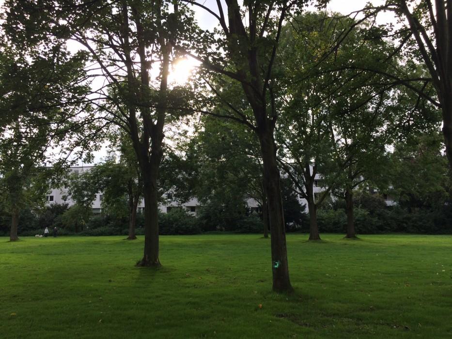 Park_Burggrafenstr